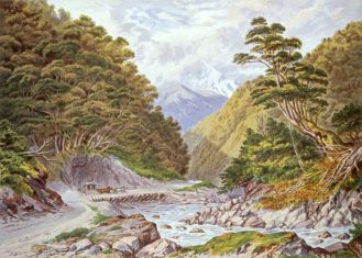 Otira Gorge, West Coast Road, (C. D. Barraud), c. 1875 National Library of New Zealand